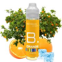 EZ:STORE B. Orange
