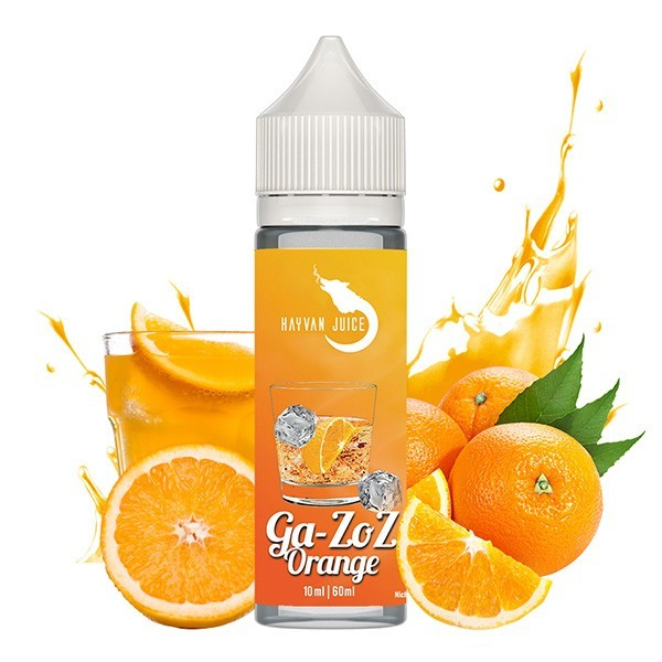 Hayvan Juice Ga-zoz Orange
